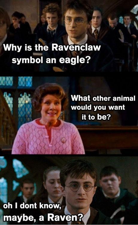 harry-potter-memes-ravenclaw-raven